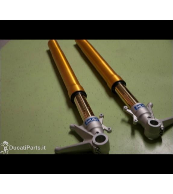 Forcelle ohlins per MH900 E...